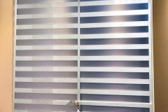 zebra-15