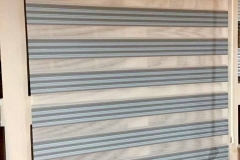 zebra-9